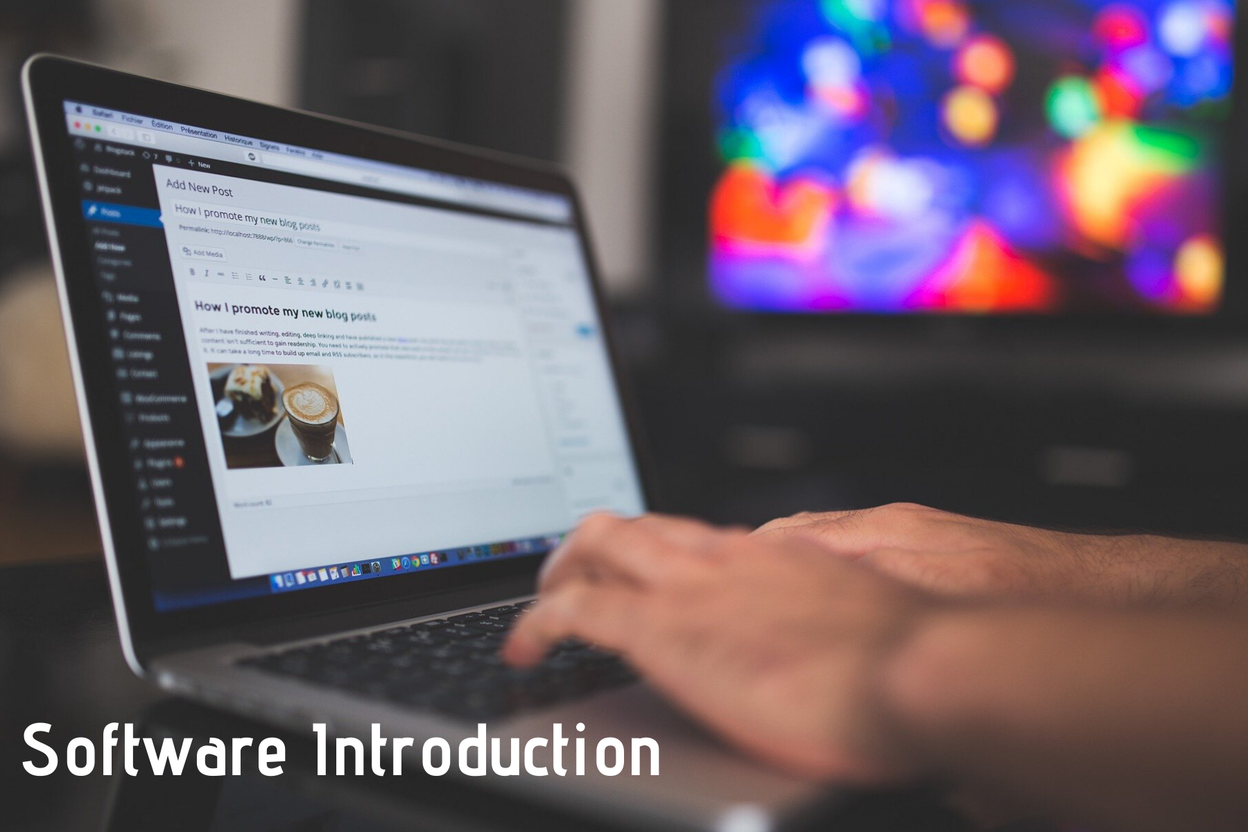 Software Introduction